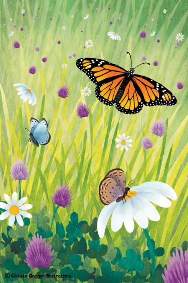 butterflyfullpage