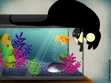 Echo and Goldfish ~ digital