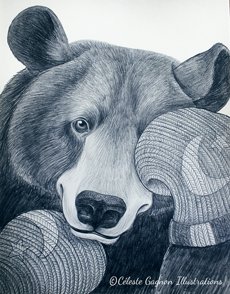 Sleepy Black Bear ~ pencil