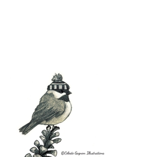 Winter Chickadee ~ Pencil