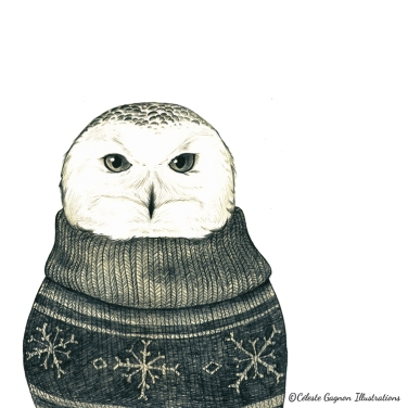 Snowy Owl ~ pencil