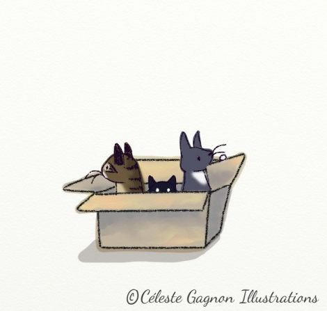3_ipaddoodle_Cats in a box