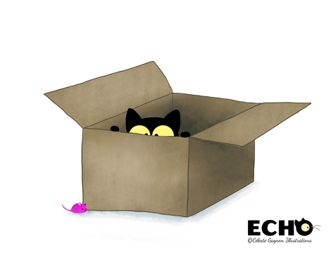 Echo big box_sml