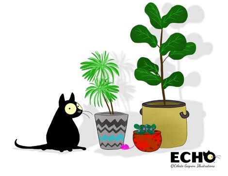 Echo Plants #1