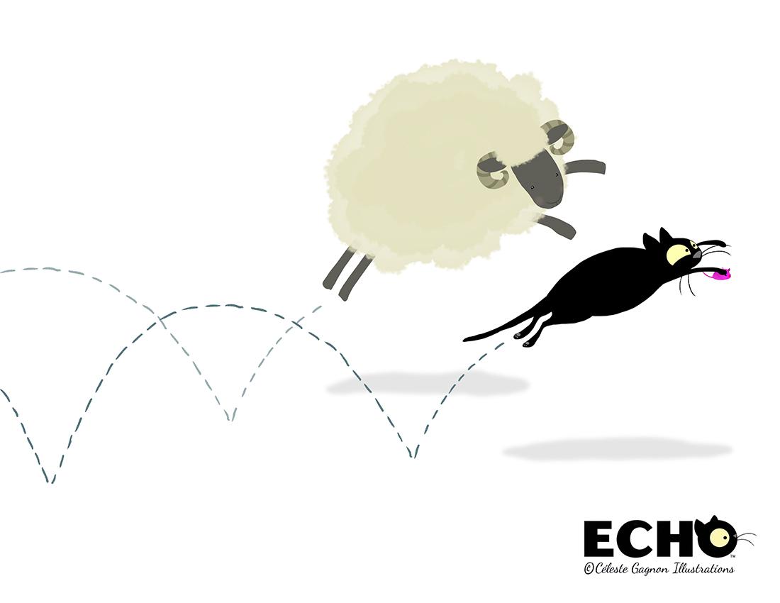 Echo Ram #2