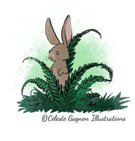 bunny fern